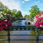 """< img src=""""amsterdam-city-5.jpg"""" alt=""""dove città università amsterdam"""">"""