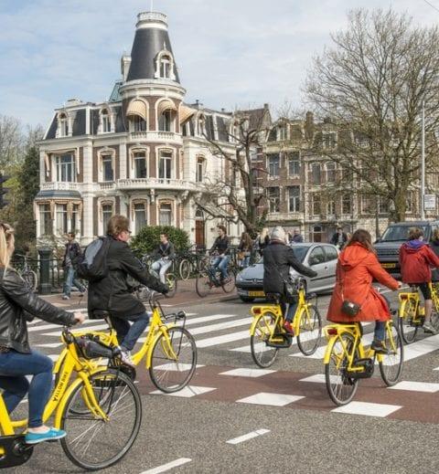 """< img src=""""amsterdam-city-6.jpg"""" alt=""""dove studiare paesi bassi migliore università"""">"""