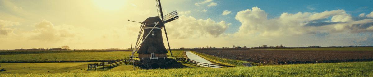 """< img src=""""NL-blog.png"""" alt=""""Studiare nei Paesi Bassi scopri tutte le informazioni utili"""">"""