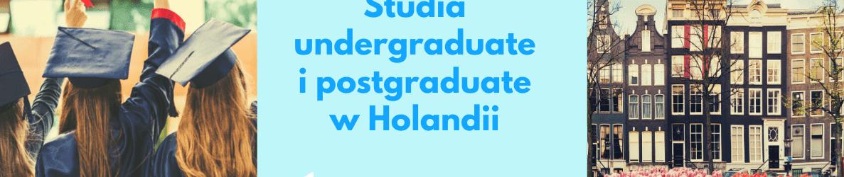 studia undergraduate i postgraduate w Holandii