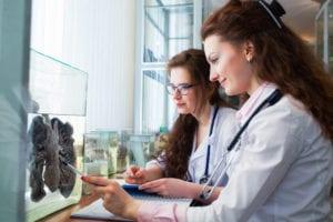 the ucat test - ucat esame - exam ucat - study abroad - studiare all'estero - study abroad - studia za granicą - elab education laboratory