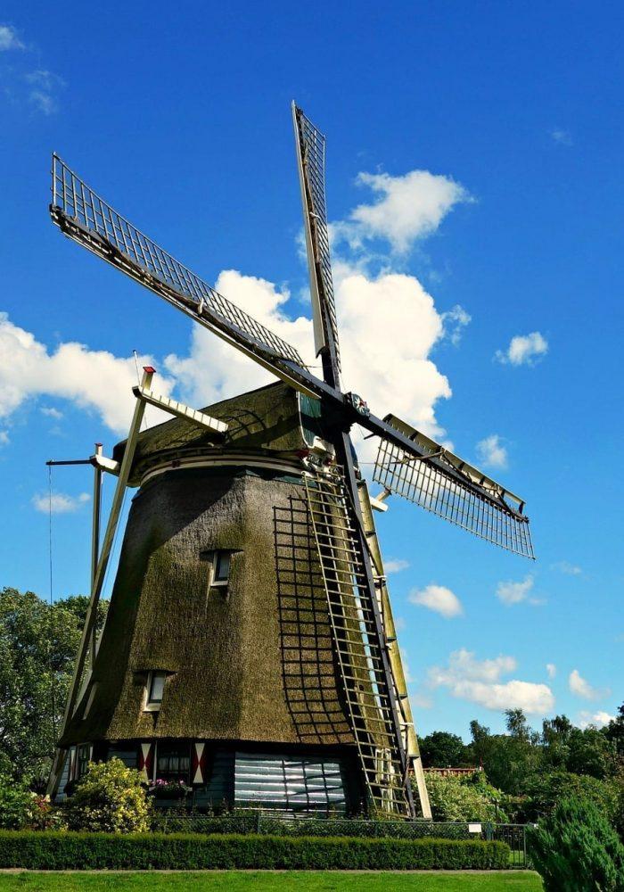 "< img src=""Studia-w-Holandii-studiare-in-olanda.jpg"" alt=""Il sistema universitario nei Paesi Bassi"">"